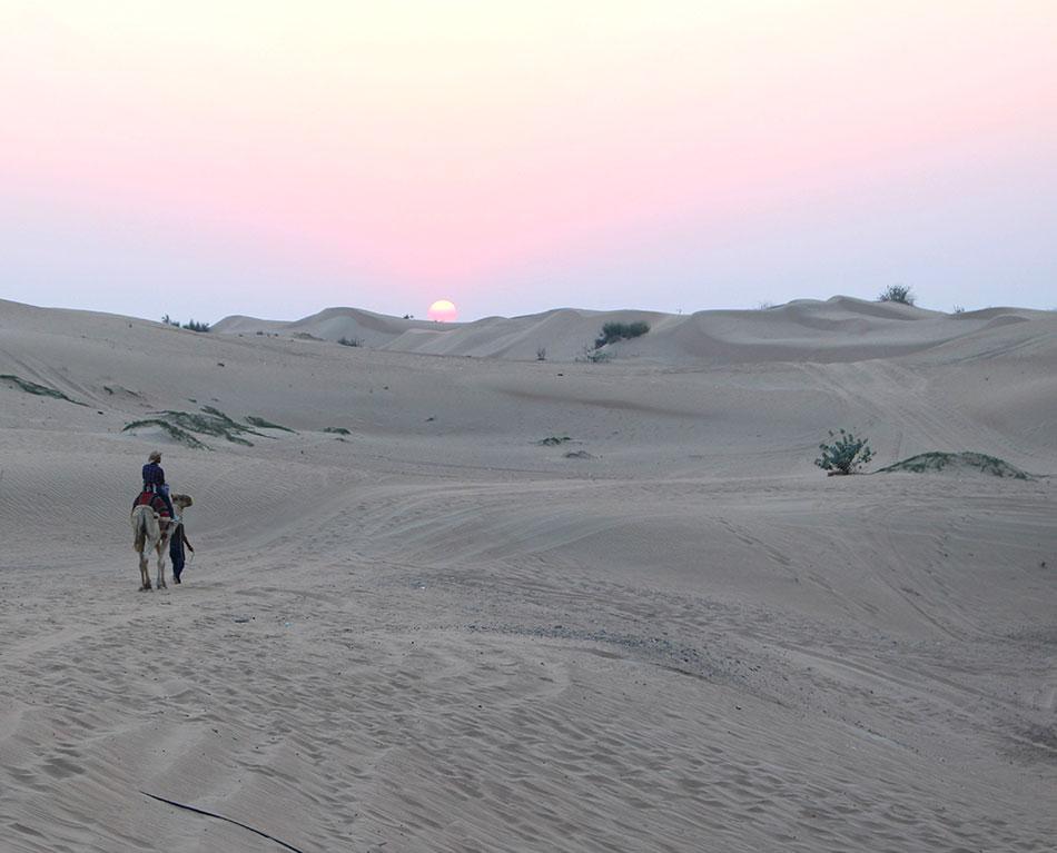 Safari dans le désert de Dubaï aux Emirats Arabes Unis