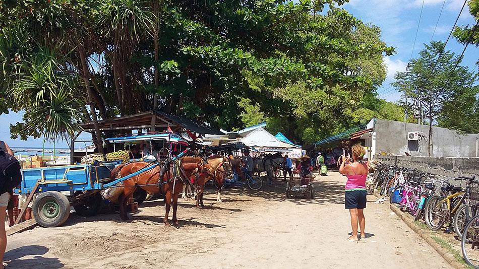 Aux îles Gili en Indonésie, le seul moyen de transport autre que la marche ou le vélo est la calèche.