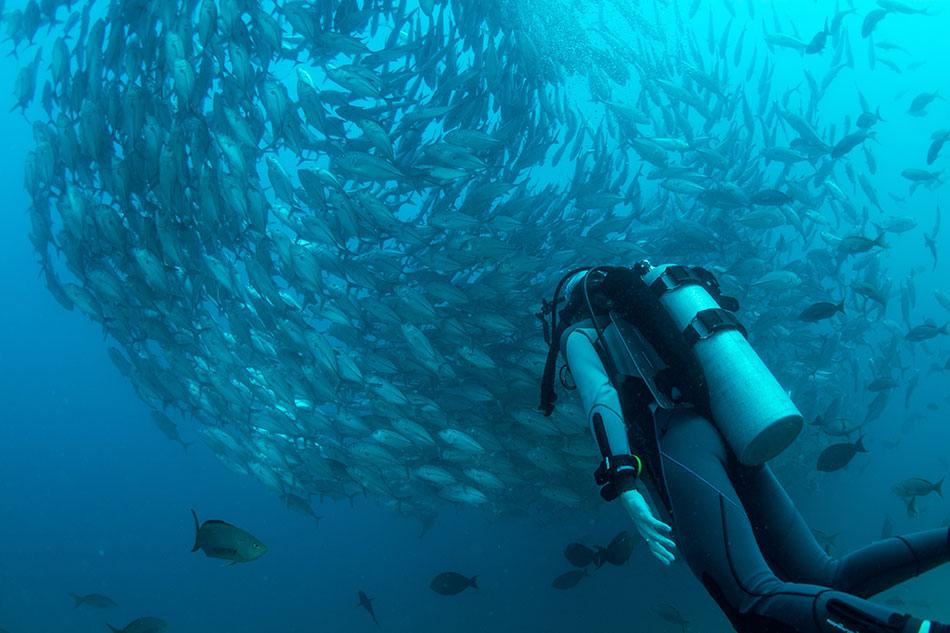Faire de la plongée sous-marine aux îles Gili en Indonésie
