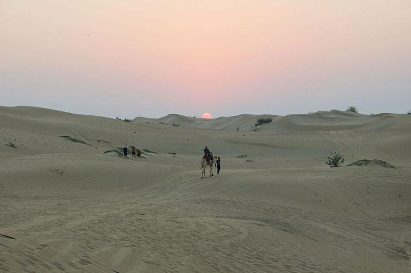 Safari desert Dubai