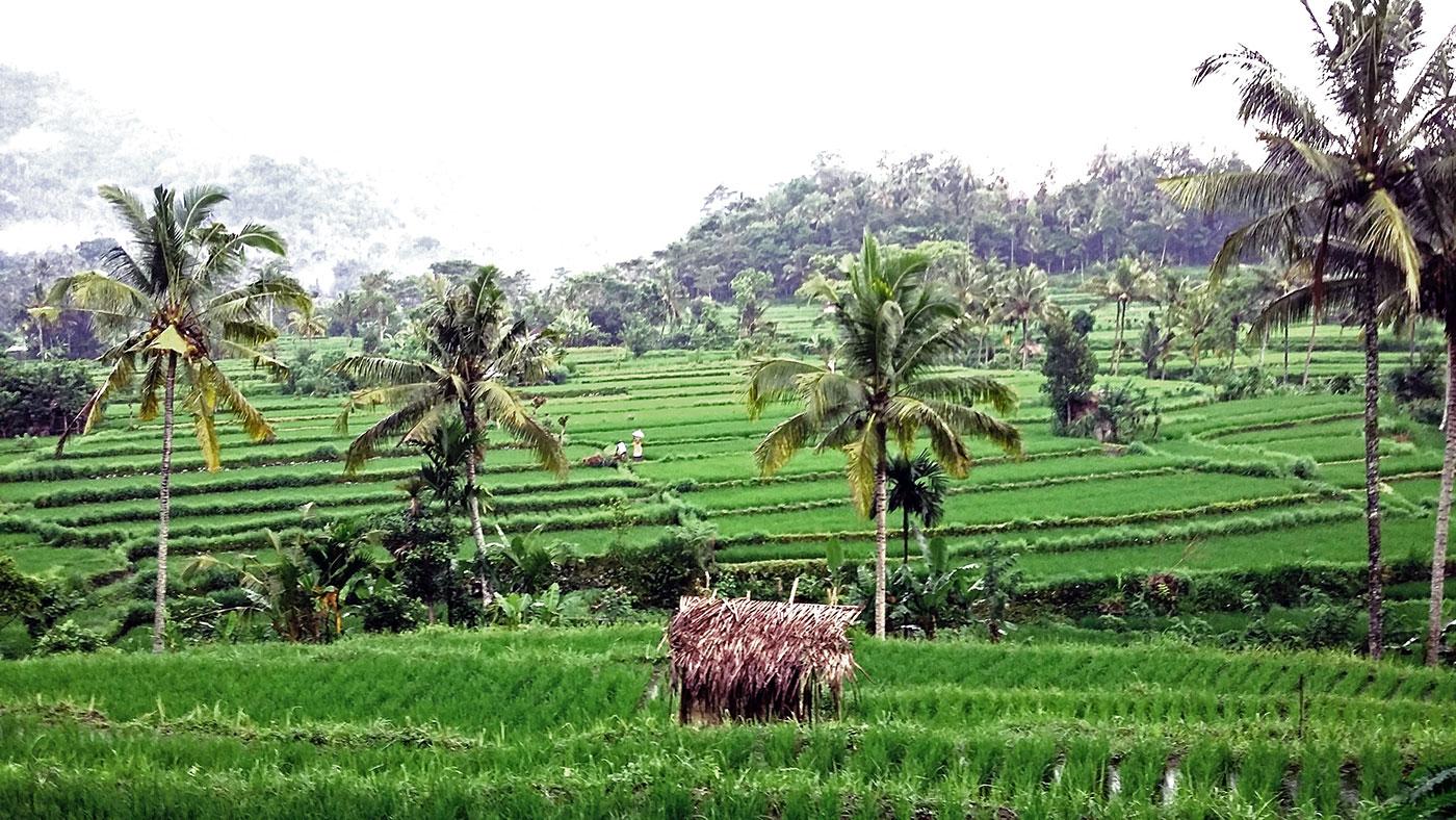 Sidemen, le Bali authentique
