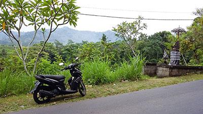 Le scooter est très économique pour se déplacer à Bali