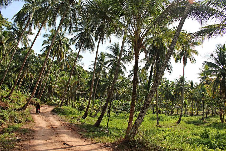 Koh Kood, située à l'Est de la Thaïlande, est une île restée calme et authentique.