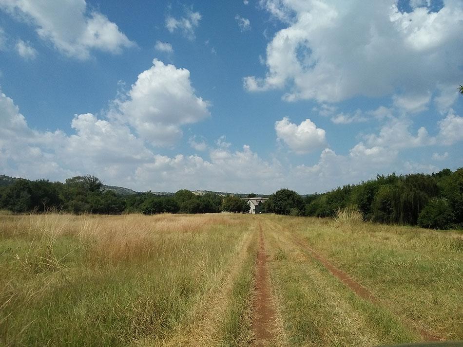 Chemin menant à une ferme dans la région de Pretoria en Afrique du Sud